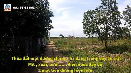 Bán 6 hecta đất CLN , Xã Túc Trưng – Định Quán, Đường lớn, Ngay khu dân cư, Giá chỉ : 380tr/sào
